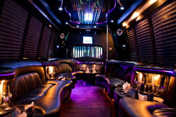 15 Person Party Bus Rental Chandler
